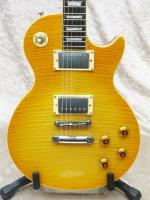 Les Paul Standard Plus Top