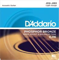EJ16  Phoshor Bronze Light